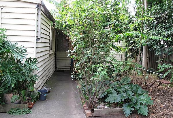 後院到後門的走廊-1