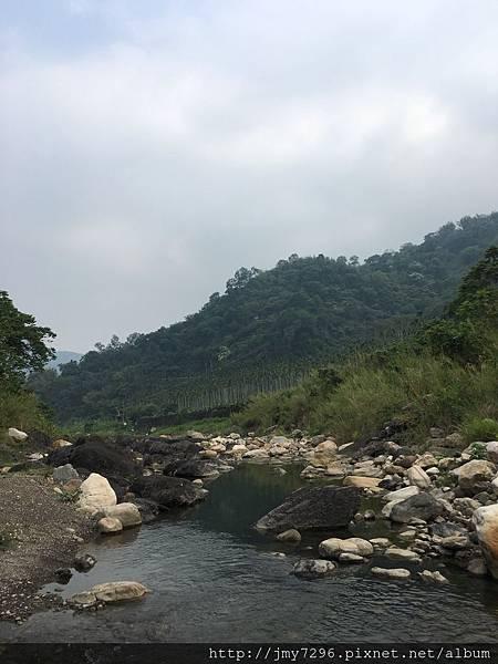 黃金森林1070421-5.jpg