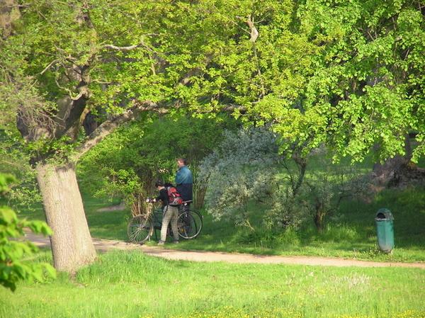 地點:Telč城鎮城堡花園
