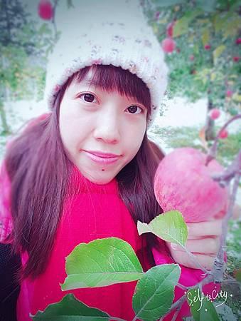 1111新幹線,青森蘋果,十和田湖_7010