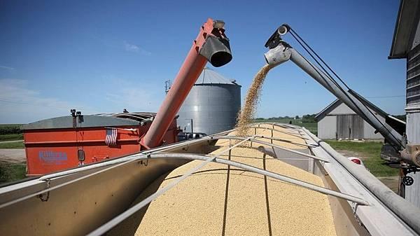 玉米期貨手續費.jpg