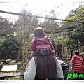 2011020617.JPG