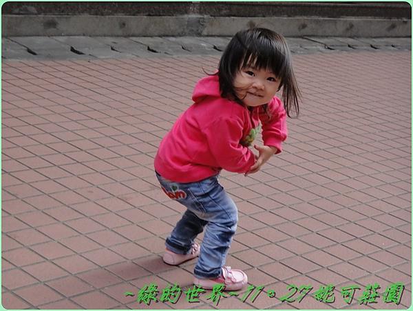 2010112705.jpg
