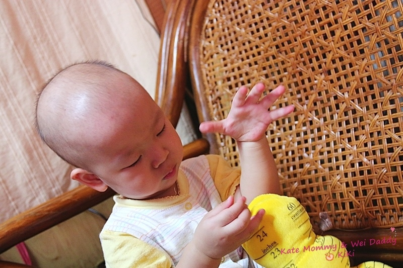 Lamaze拉梅茲嬰幼兒玩具12