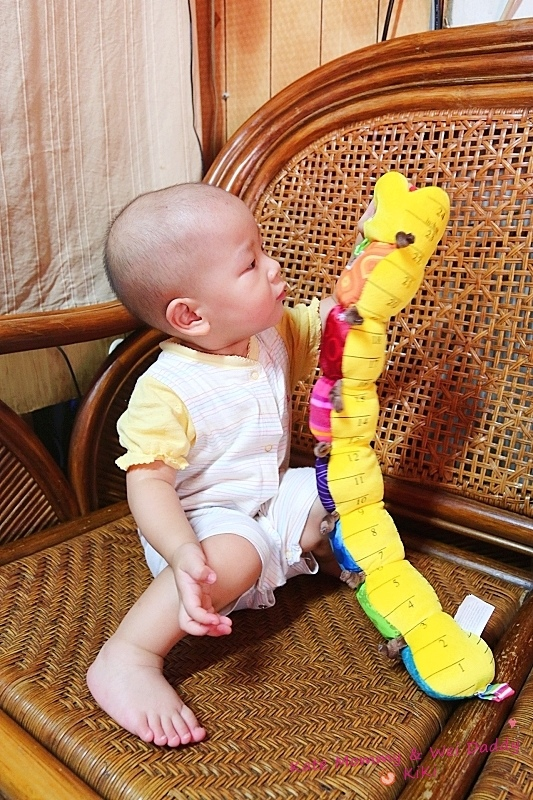 Lamaze拉梅茲嬰幼兒玩具15