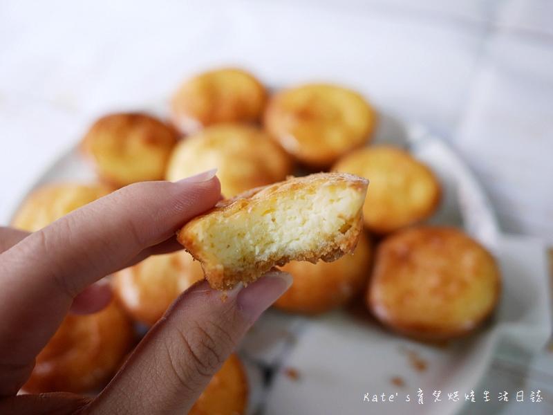 檸檬乳酪球食譜 檸檬乳酪球做法 乳酪球怎麼做 小孩點心 小孩點心推薦 乳酪球食譜 乳酪球怎麼做23.jpg