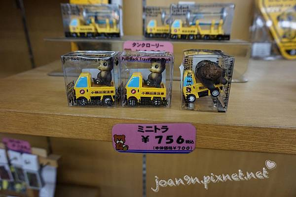 PhotoCap_052