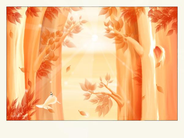 Softness0203.jpg