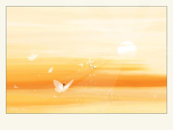 Softness0607.jpg