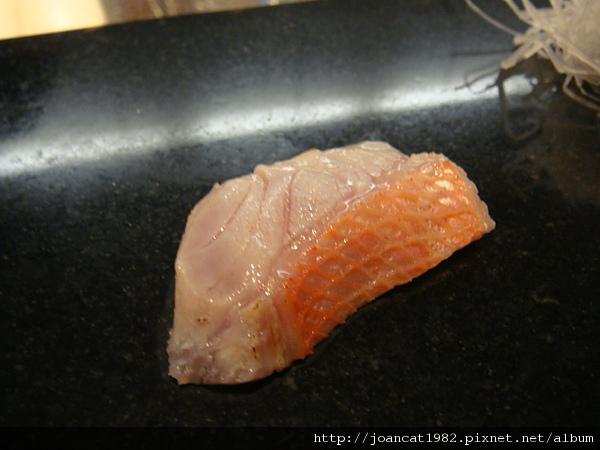 魚道生2 014.jpg