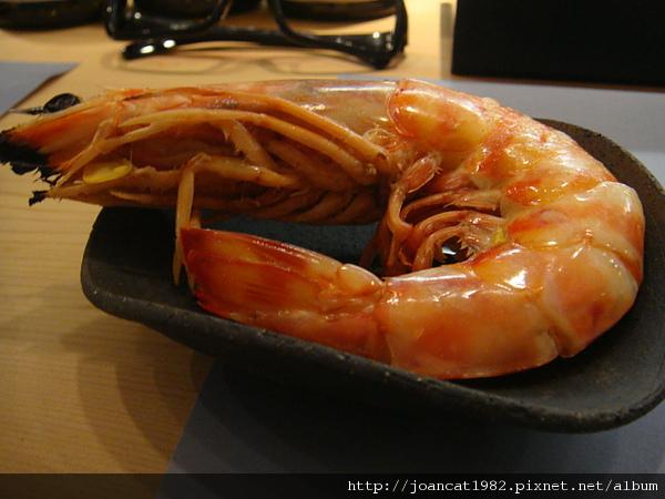 魚道生2 065.jpg