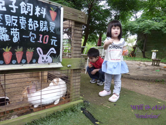 青林農場05.jpg