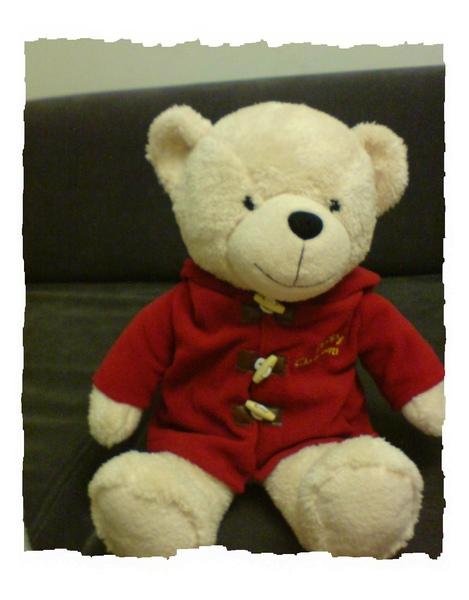金牌寶寶熊.jpg