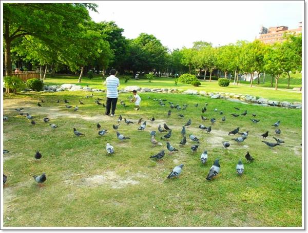 高雄中央公園15.jpg