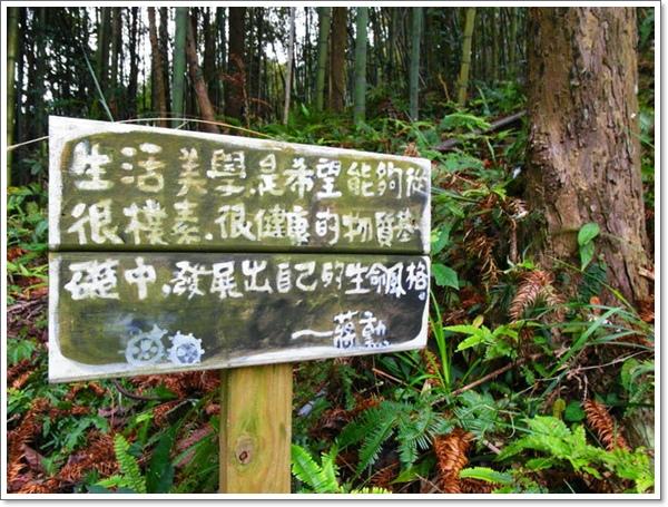 山行玫瑰41.jpg