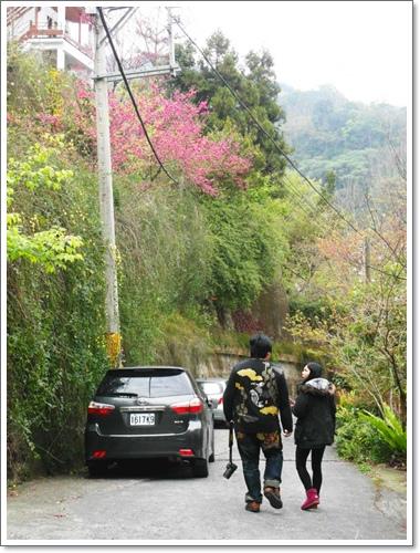 山行玫瑰44.jpg