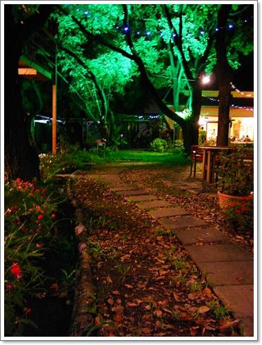 綠光森林06.jpg