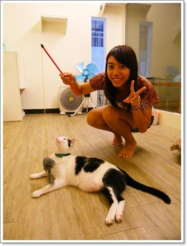 貓吐司32.jpg
