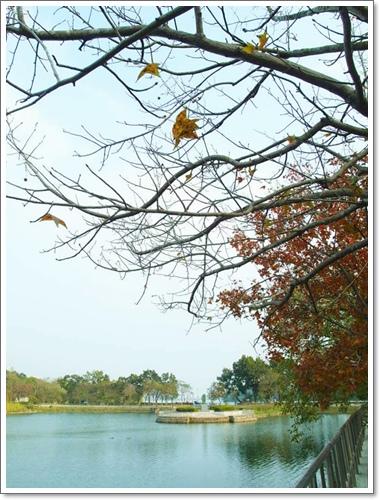 澄清湖25.jpg