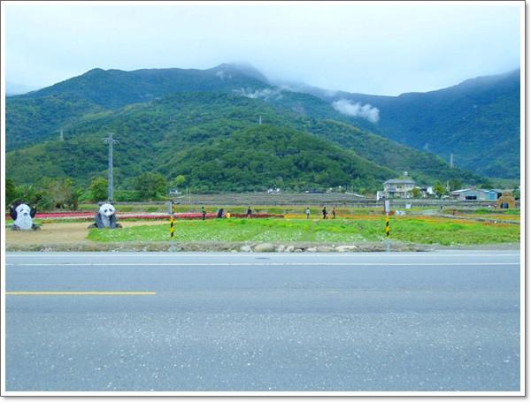 關山花海11.jpg