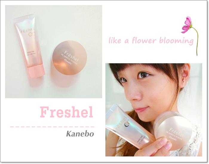 Freshel00.jpg