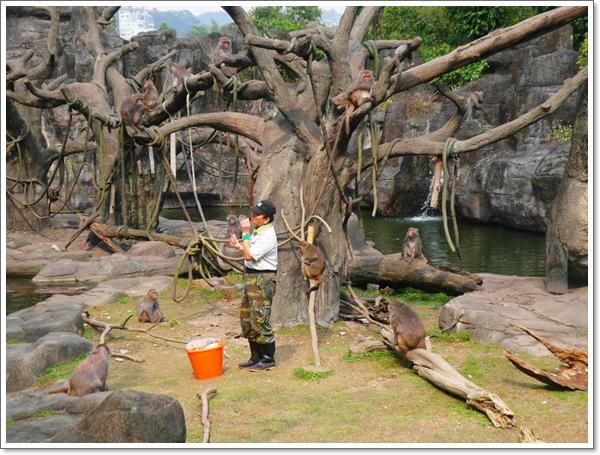 木柵動物園07.jpg