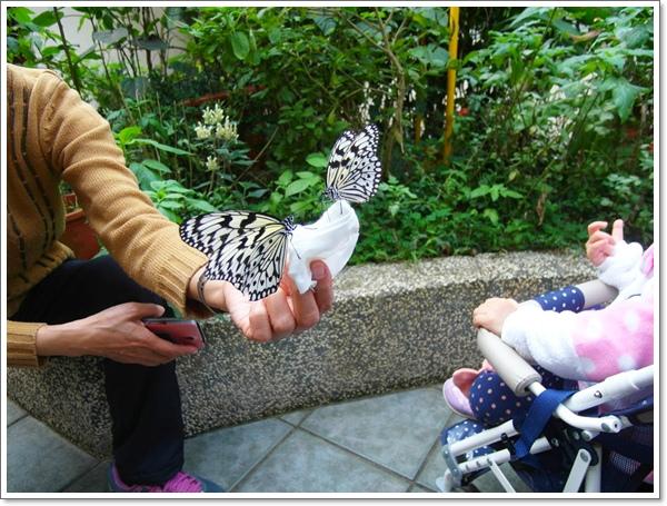 木柵動物園10.jpg