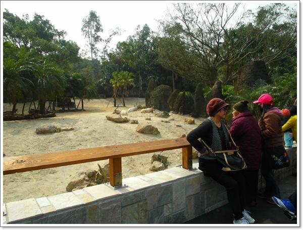 木柵動物園17.jpg