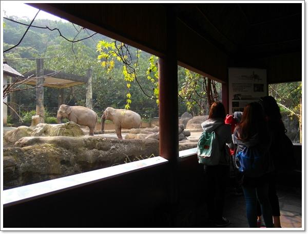 木柵動物園24.jpg