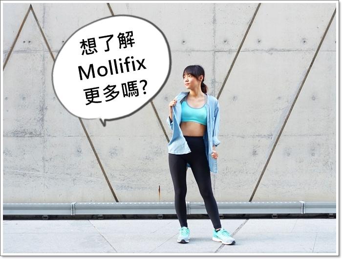 mollifix28.jpg