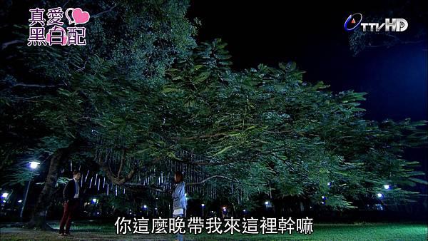 [HD] 真愛黑白配第21集.ts_20131029_204048.795