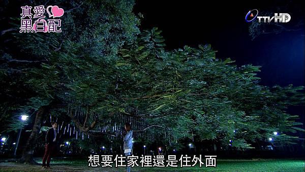 [HD] 真愛黑白配第21集.ts_20131029_204055.300