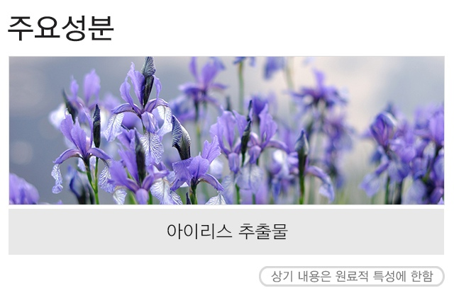 MISSHA_Flower_bouquet_Cleansing_Foam__Iris_2-crop.jpg