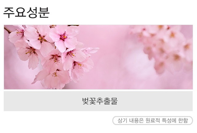 MISSHA_Flower_bouquet_Cleansing_Foam_Cherryblossom_2-crop.jpg