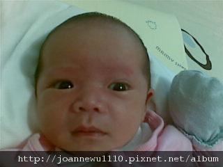 20100227(002).jpg