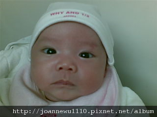 20100326(002).jpg