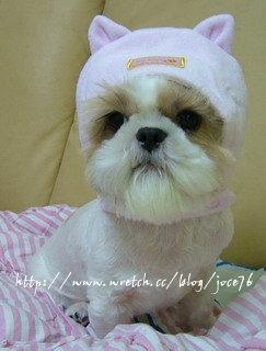 我不要戴這超娘的兔兔帽啦