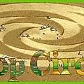 Crop Circle 003.jpg