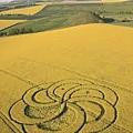Crop Circle 005.jpg