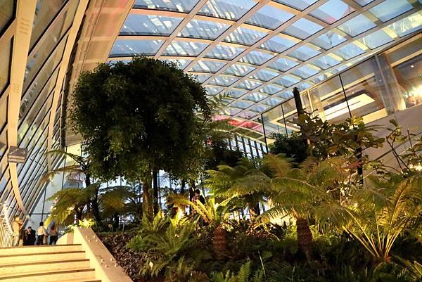 23 Sky Garden.jpg