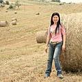 near Montepulciano 02 Jocelyn.jpg