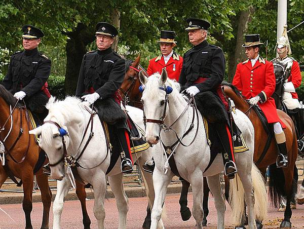 女王的騎兵15.jpg