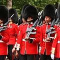 女王的騎兵14.jpg