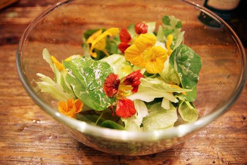 金蓮花沙拉-1