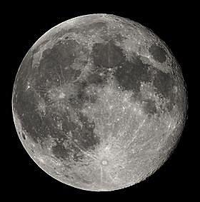 月亮草本2