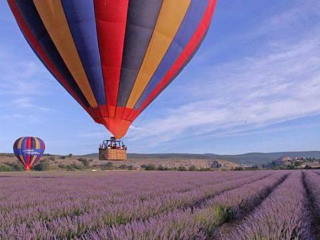 forcalquier 熱氣球2.jpg