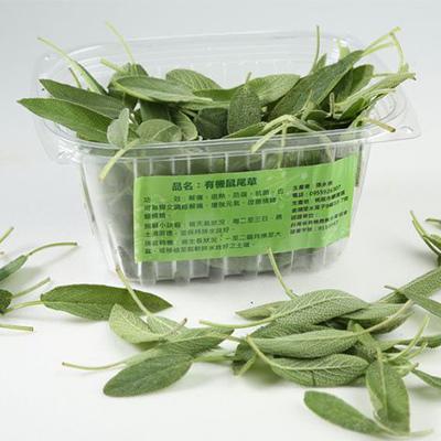 有機鼠尾草(鮮食)400.JPG
