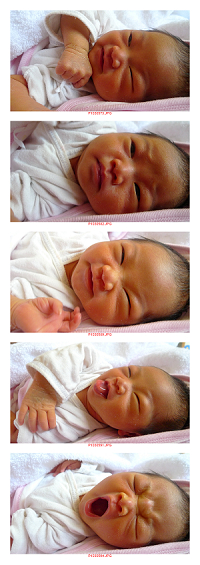 表情多多曾寶寶