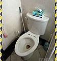 漢誠工程行-主浴室馬桶更換、置物架安裝、次浴室緩降馬桶蓋更換
