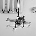 我把YKID號吊起來了